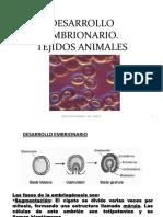 3_.- tejidos (2).pdf