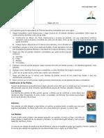 24. Plantas Silvestres Comestibles-Especialidad Desarrollada