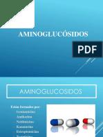 Aminoglucosidos Final