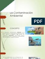 La Contaminación Ambiental S1