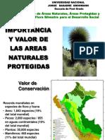 Importancia de Areas Naturales_esen
