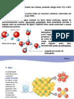 aula_2_quimica_fisiologica