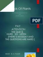 Kinds of Plants
