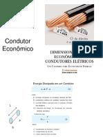 Condutor_Economico
