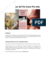 Meditaciones Del Vía Crucis Pro-Vida