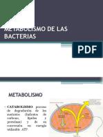 c6 Metabolismo de Las Bacterias