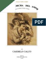 La Antorcha Del Amor (Carmelo Calvo Nuin). Fernando Abaunza