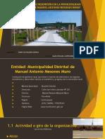 Informe Final de Desempeño en La Municipalidad Distrital