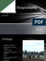 Fisiología respiratoria equina