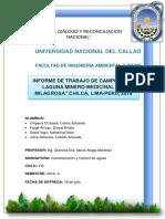 Informe Chilca 18-07-18 Actual