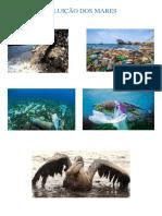 Poluição Dos Mares