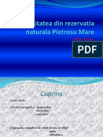 Biodiversitatea Din Rezervatia Naturala Pietrosu Mare