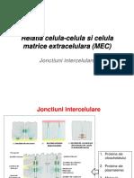 CC4_Relatie celula-MEC.pdf