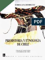 Orellana Rodriguez Mario - Prehistoria Y Etnologia de Chile