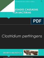 Enfermedades Causadas Por Bacterias