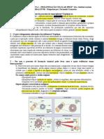 Estudo Dirigido Proliferação Celular