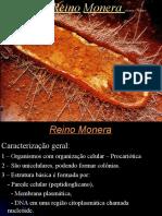 Monera_PH - P1