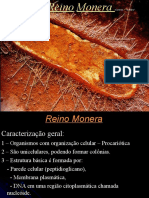 Monera_PH - Completo