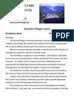 village voice 5
