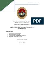 Plan estratégico resumido del carmín de cochinilla en Arequipa