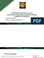 Biología semana 8 -parte 1- (1).pdf