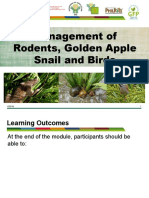 module-10e-management-of-rodents-golden-apple-snail-and-birds-presentation.pptx