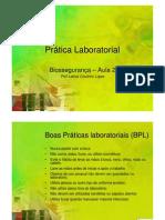 Aula 2 - Bpls PDF