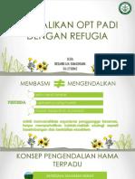 Mengendalikan OPT Padi Dengan Refugia