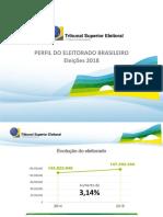Perfil Do Eleitorado Brasileiro - 2018
