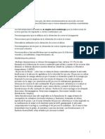 Ferroaleaciones hierro.doc