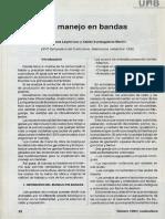 cunicultura-manejo de bandas.pdf