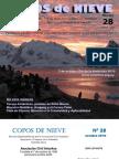 Copos de Nieve 2010- Nro 28