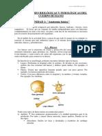 Unidad 1 - Anatomia Basica Parte 1