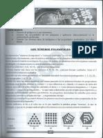 5-Poligonos.pdf