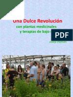 Dulce Revolucion Josep Pamies