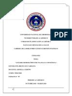 practica 6 citologia.docx