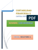 Capital Contable Luis