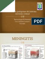Bacterias patógenas del sistema nervioso central
