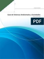 guia sas 2010 (1).pdf