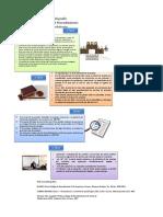 Infografia etapas del proceso probatorio