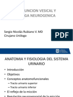 Disfuncion Vesical.vejiga Neurogenica 2017