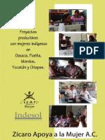 Proyectos Productivos con Mujeers Indígenas.pdf