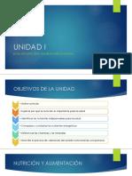 BASES DE NUTRICIÓN Y ALIMENTACIÓN SALUDABLE.pdf