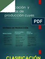 Clasificación y Sistemas de Producción Cuyes