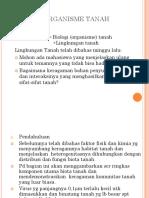 4. Soil Flora Fauna 1