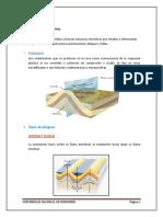 INFORME_DEL_MORRO_SOLAR - copia.docx