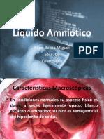 Presentacion Liquido Amniotico 97 2003