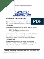 l´aparell locomotor