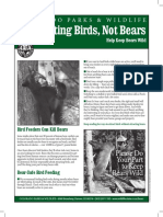 Feeding Birds in Your Back Yard