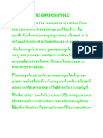 Process of the Carbon Cycle